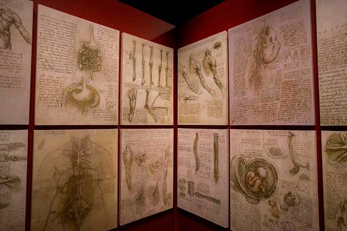 Leonardo Da Vinci – 500 anos de um gênio e Mona Lisa Illusion | MIS Experience